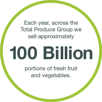 Sustainable Industry 100 Billion Portions