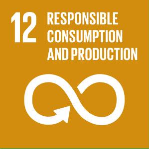 Global-Goals-Symbols-12-Orange