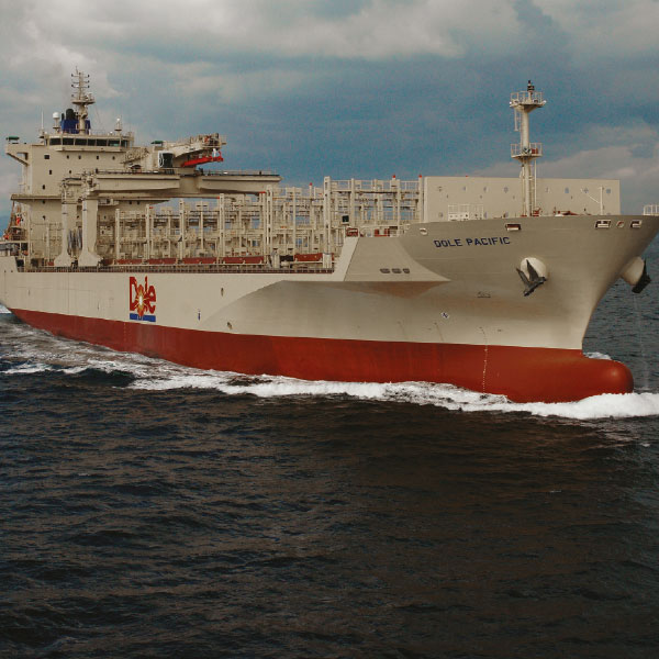 An-Agent-of-Change-Ship
