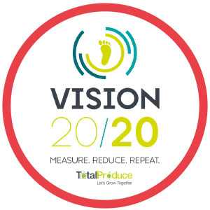 Vision 2020 Red Outline